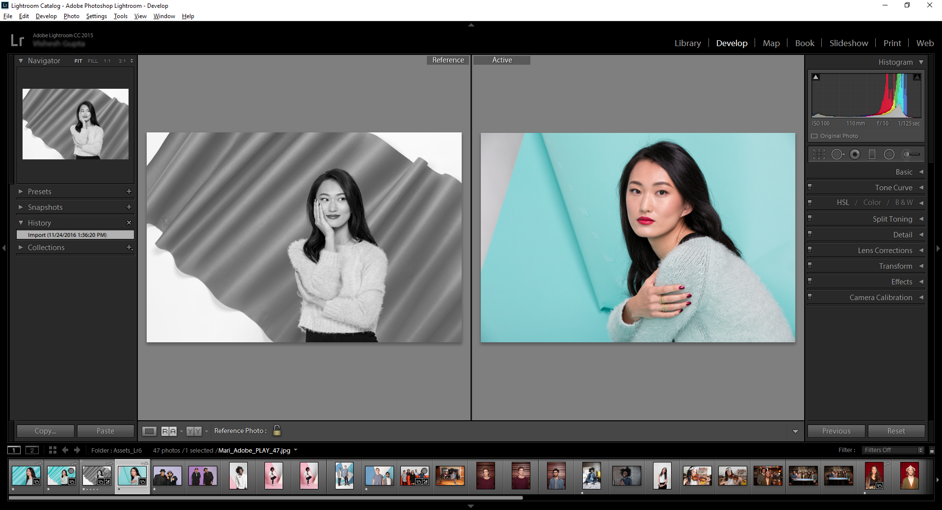 Lightroom reference view
