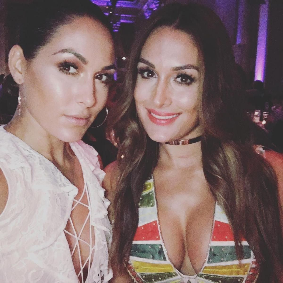 Pussy Instagram The Bella Twins naked photo 2017