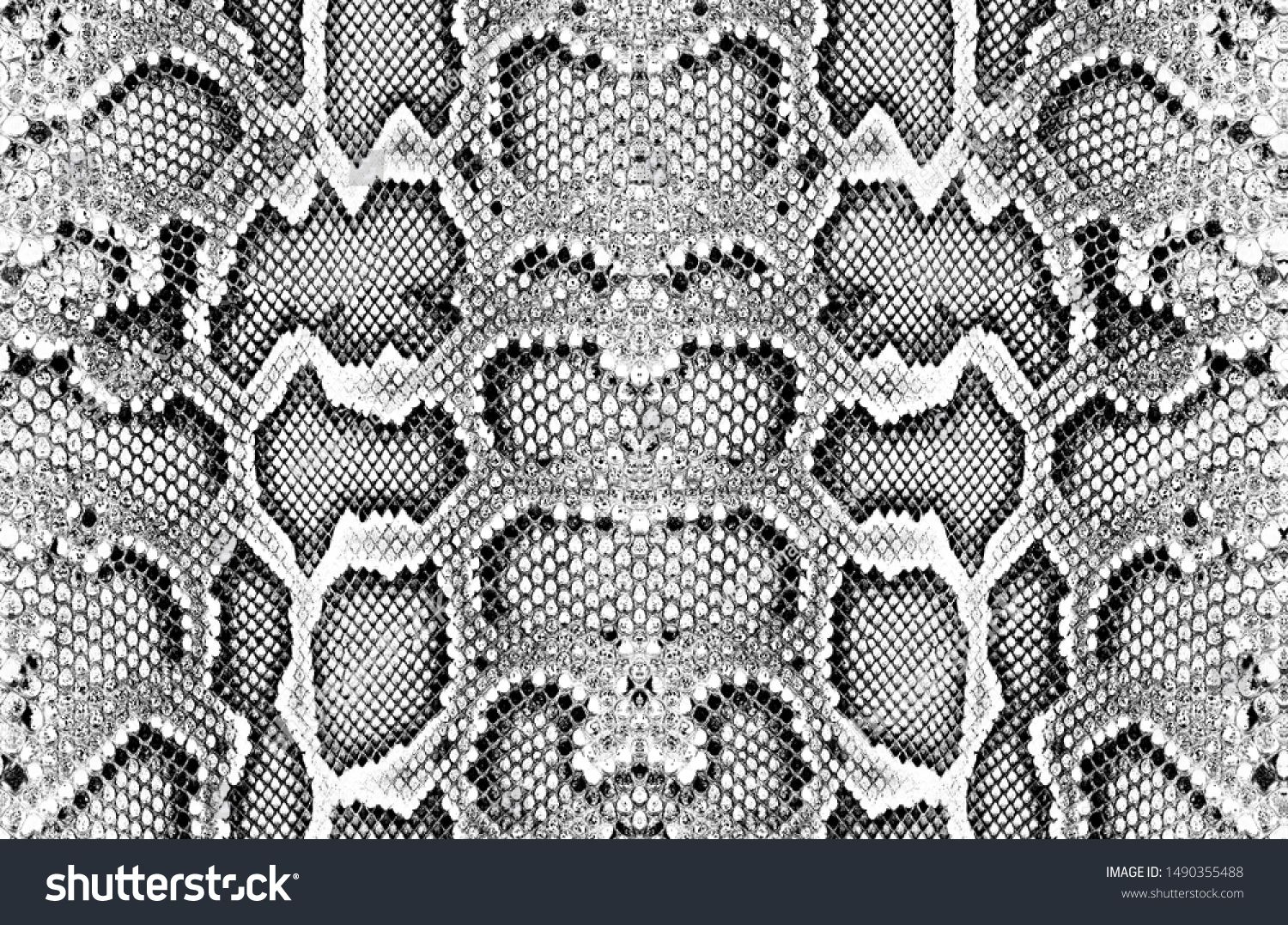 Snake Skin Pattern Texture Repeating Seamless Monochrome Texture Snake Fashionable Print Fashion And Styl Textures Patterns Snake Skin Pattern Snake Patterns