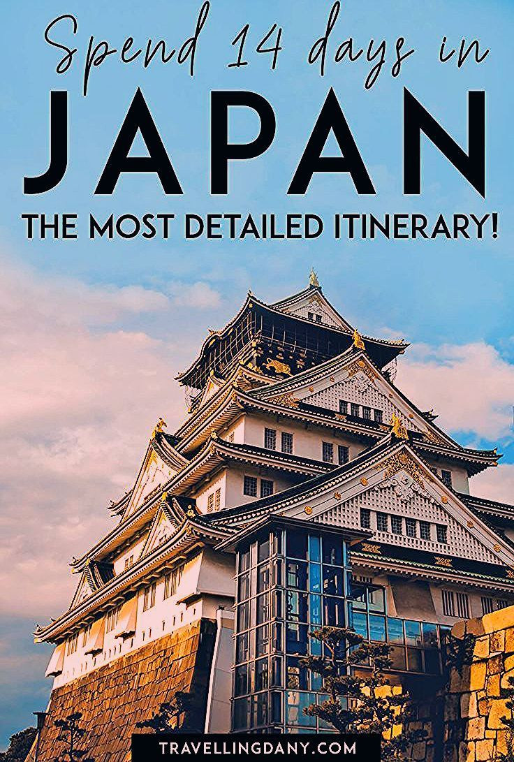Photo of An unforgettable trip to Japan!
