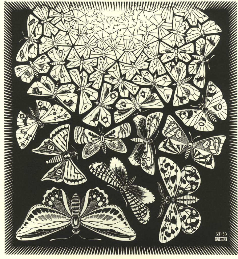 M.C. Escher - Farfalle (1950). Palazzo Reale, Milano. | Art ...