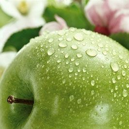 Health Benefits Of Apples Epidemiological Evidence