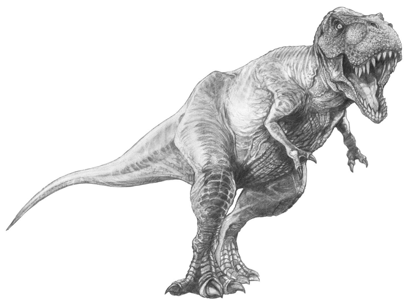 #Tyrannosaurus Rex