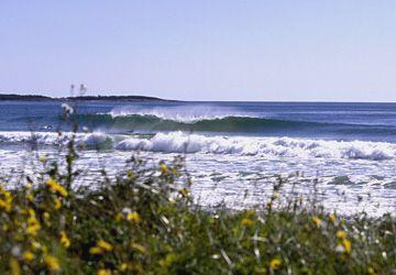 Google Image Result for http://www.surfline.com/travel/surfmaps/North%2520America/Canada/Nova%2520Scotia/Puu_Nova_Scotia_Martinique.jpg