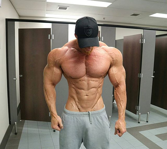 Scotty Huck Muscles 11 In 2019 Body Building Men
