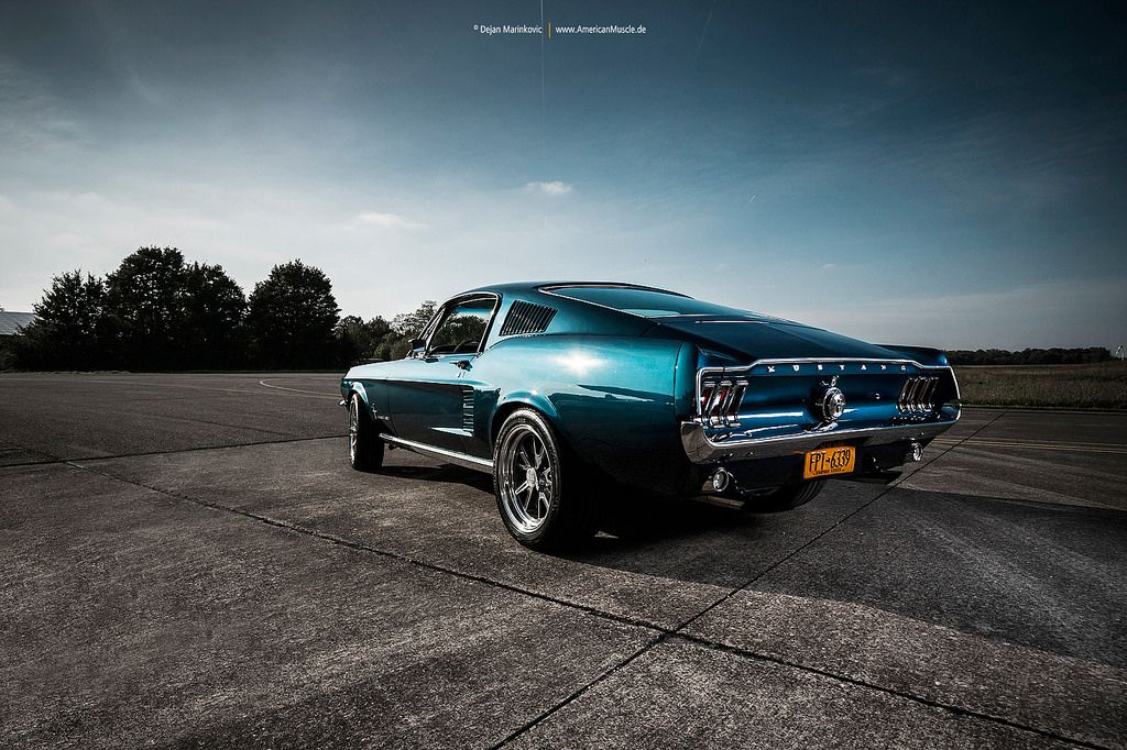 Blue Fastback | Ford mustang fastback, Ford mustang and Mustang