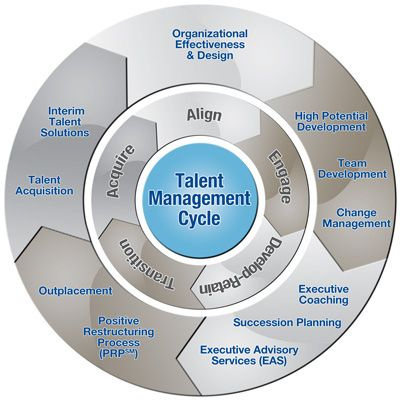 Developing & Training Human Resources in Organizations