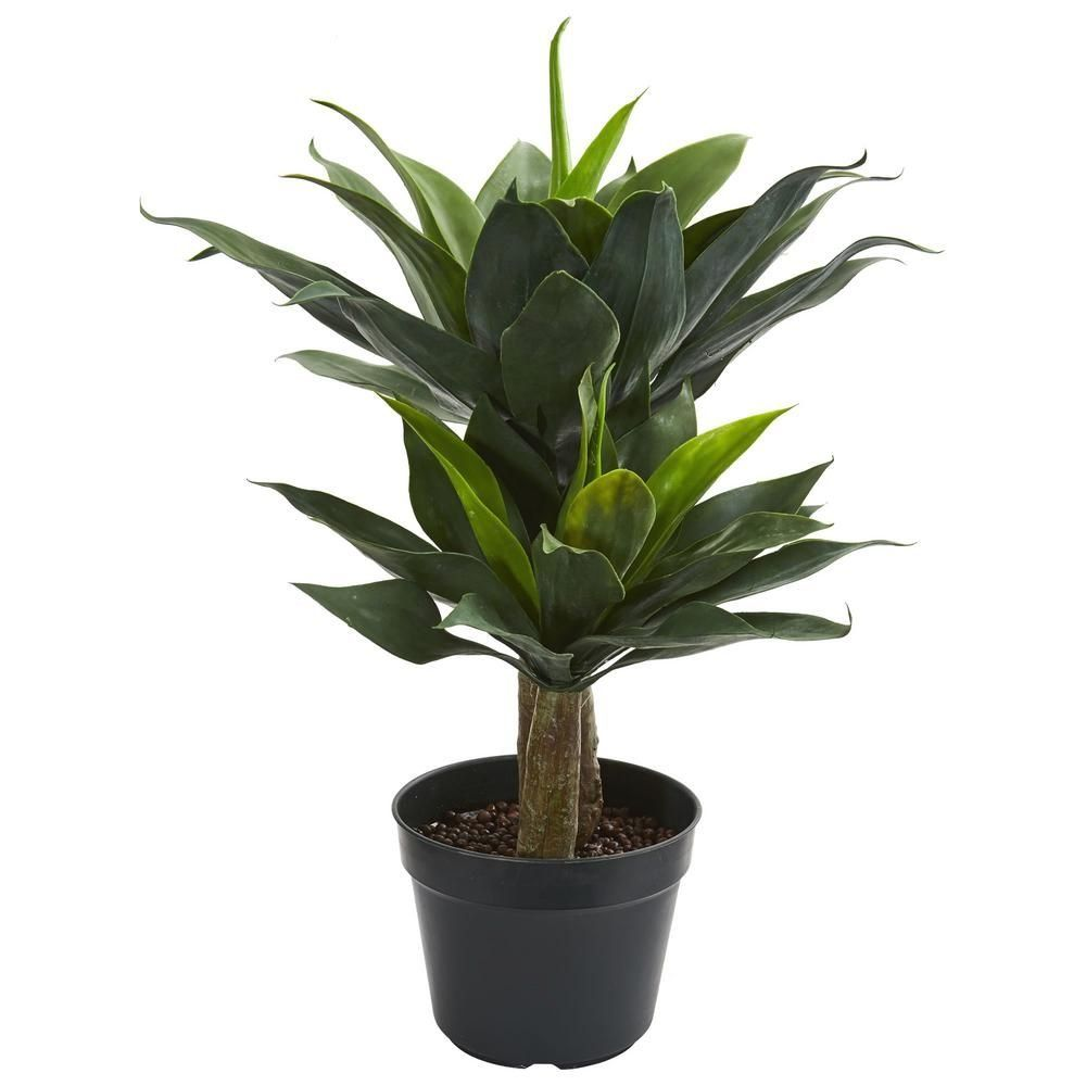 Nearly Natural Indoor 29 In Double Agave Succulent Artificial Plant 8162 The Home Depot 1000 In 2020 Artificial Plants Planting Succulents Artificial Succulents