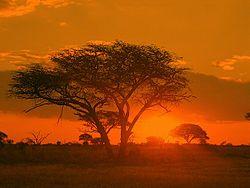 Sunrise Matobo Zimbabwe