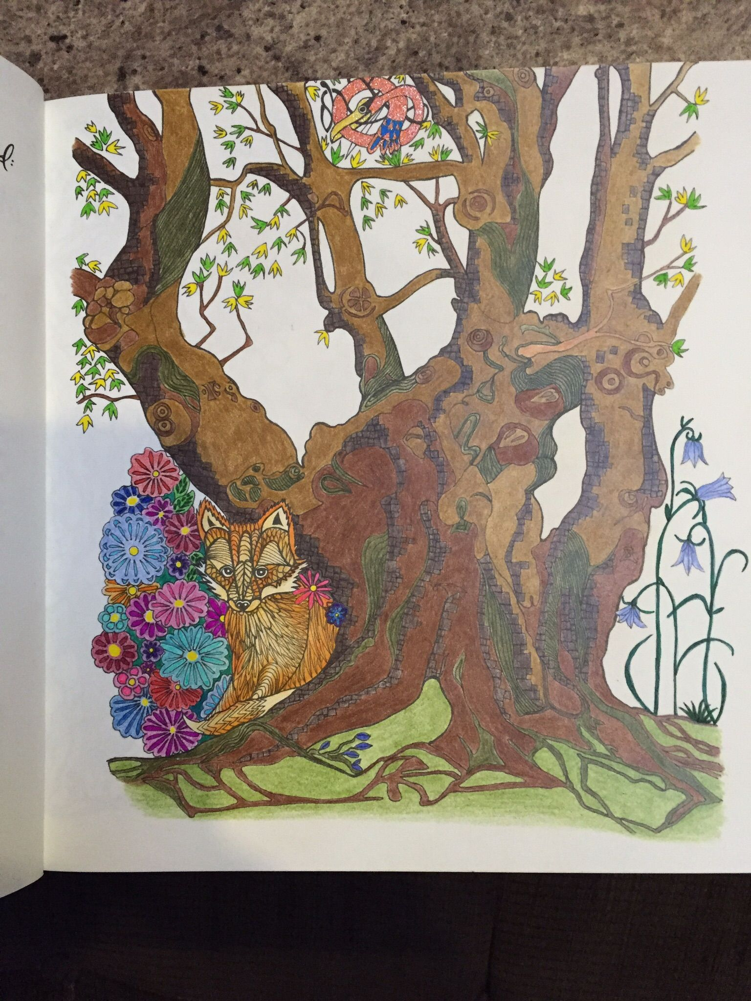 Adult Colouring Tangle Wood Jessica Palmer