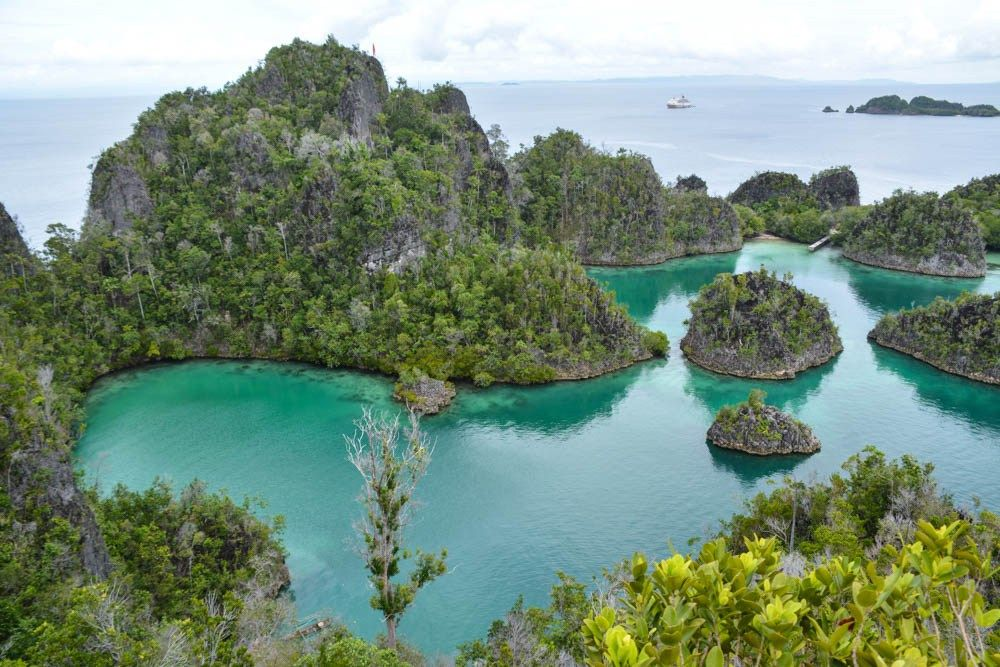 Pristine and unspoilt nature, Raja Ampat - one of 4 things to see before you die #Indonesia