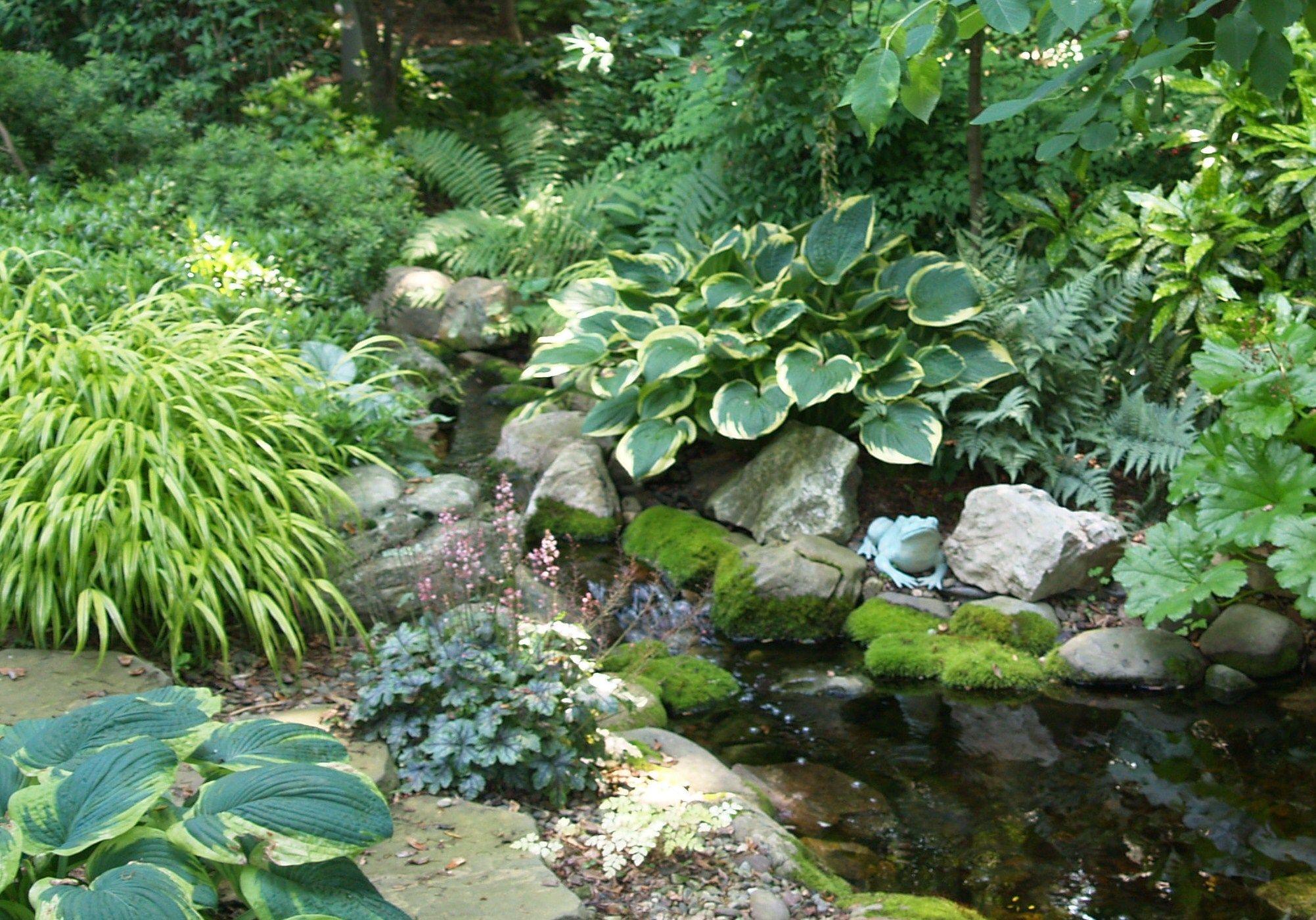 Pin On Beautiful Shade Gardens