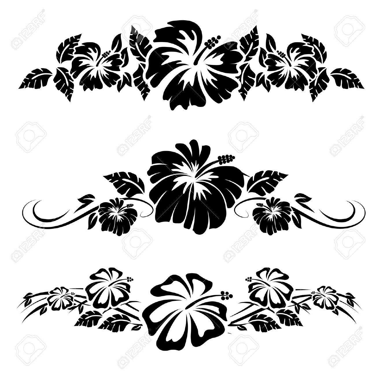 Various hibiscus hawaiian tropical flowers Hawaiian