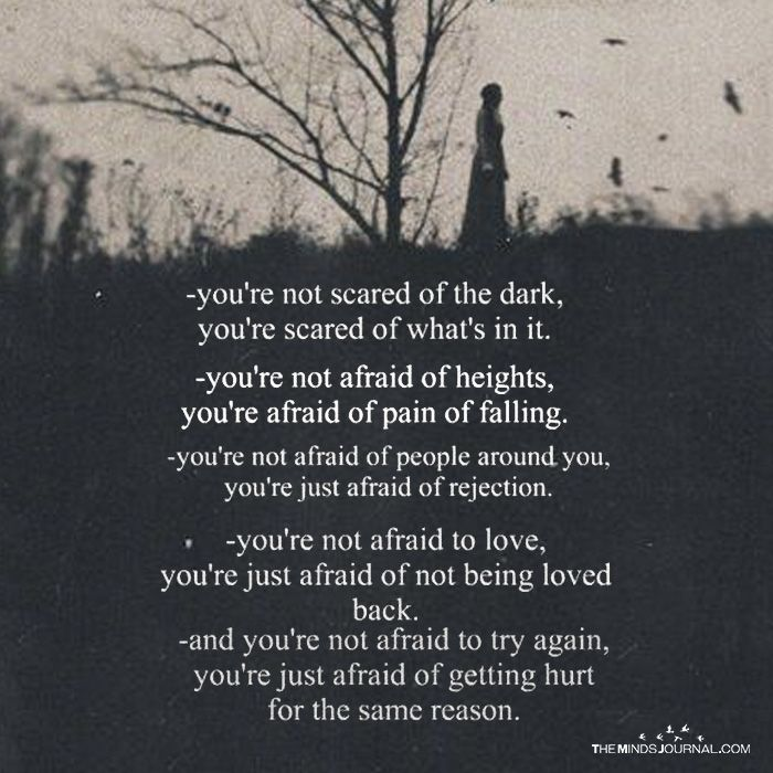 Youre Not Scared Of The Dark Youre Scared Of Whats In It Words