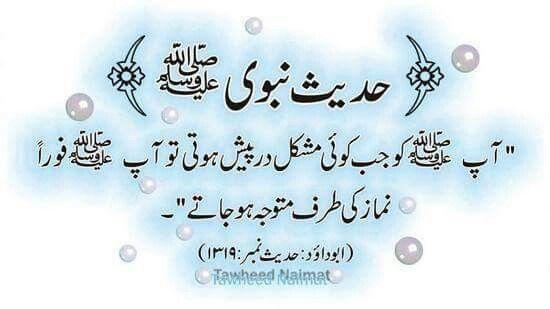 hadith on pinterest ahades 7 hadees free