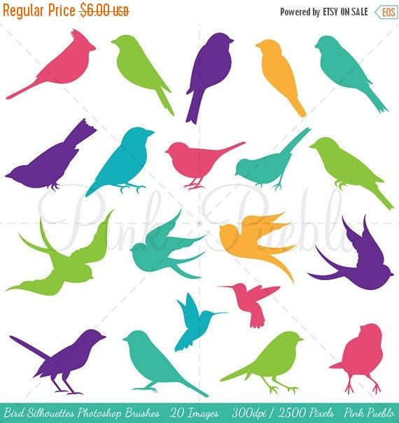 Photo of Bird Silhouettes Photoshop Brushes, Bird Photoshop Brushes – Commercial and Personal