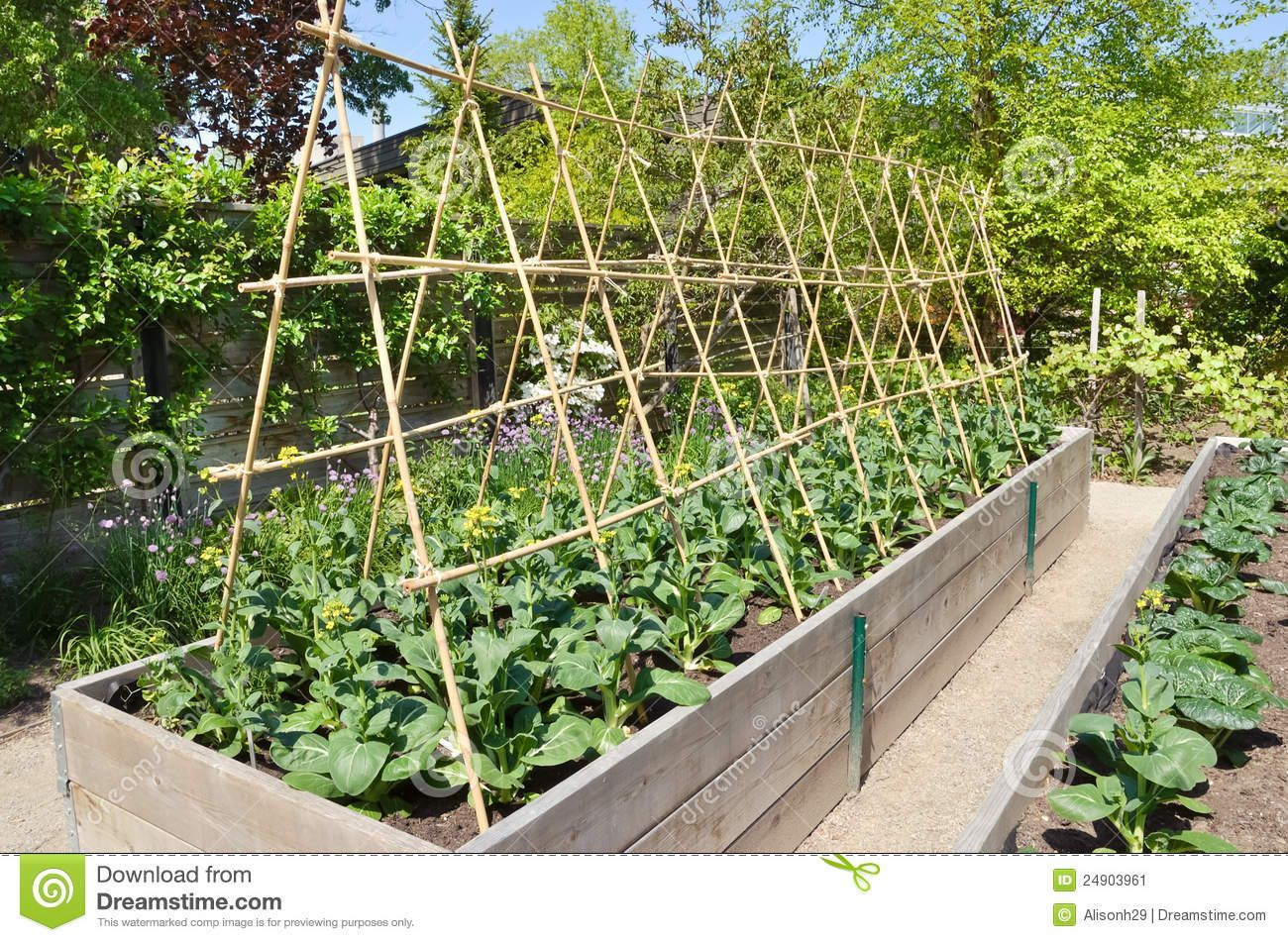 Kitchen Gardens   Google Search