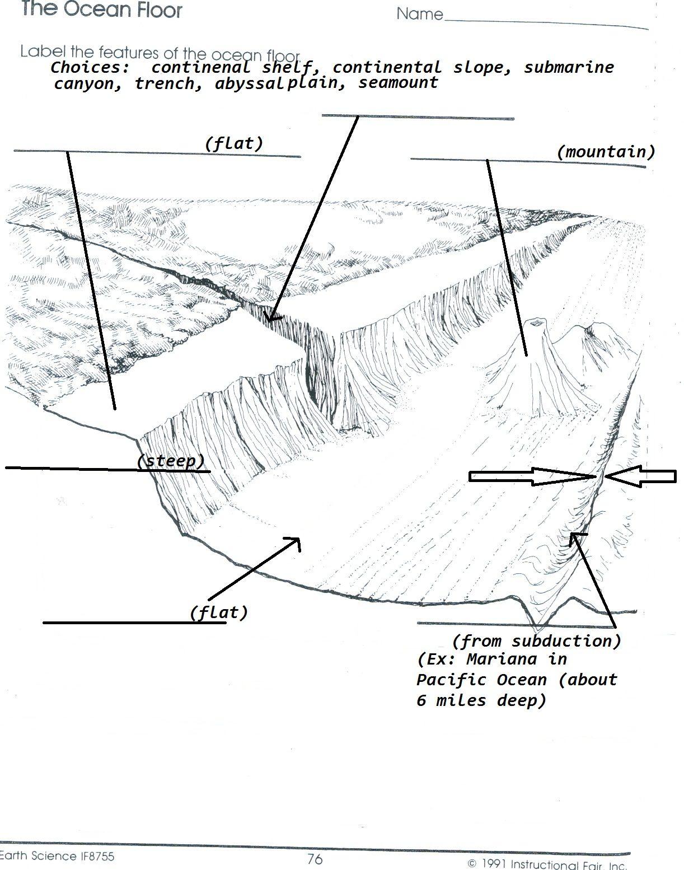 Label The Ocean Floor Worksheet Floor Ideas Ocean