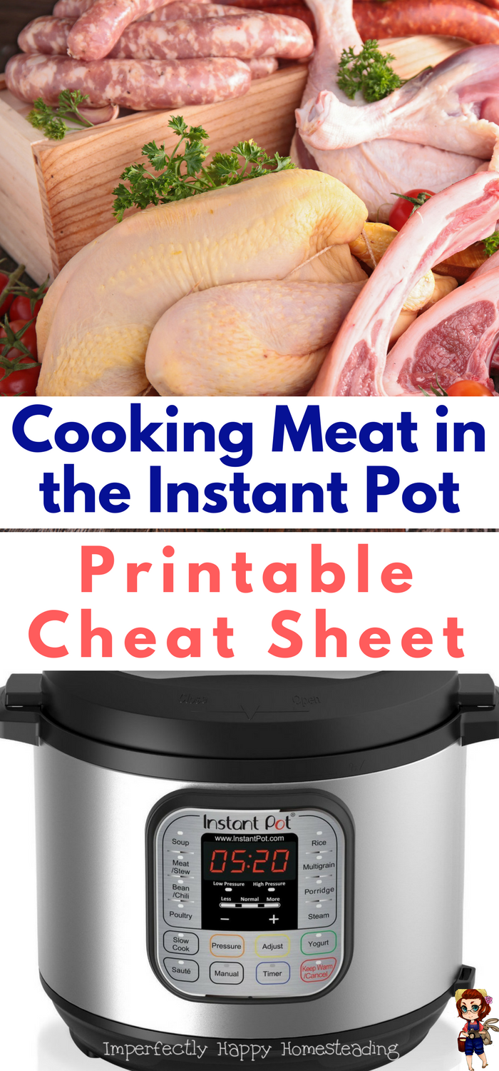 How To Cook Meat In The Instant Pot With Free Cheat Sheet Cooking Power Cooker Recipes How