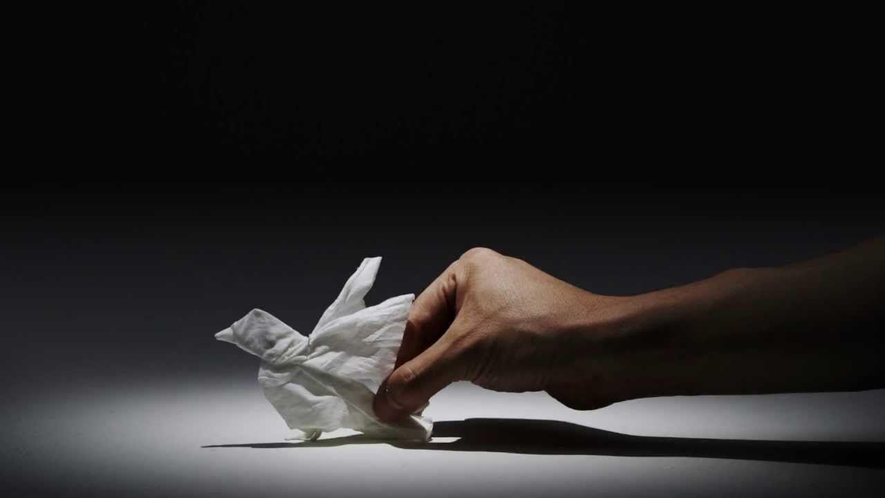 Nepia una empresa japonesa de pañuelos de papel que lanzó un hermoso spot para presentar su compromiso con el medio ambiente, utilizando una bien lograda animación en stop-motion con diversidad de animales silvestres hechos de papel. El origami es un arte complejo y a la vez delicado, y este es un claro ejemplo de utilizar esa idea de forma muy creativa.