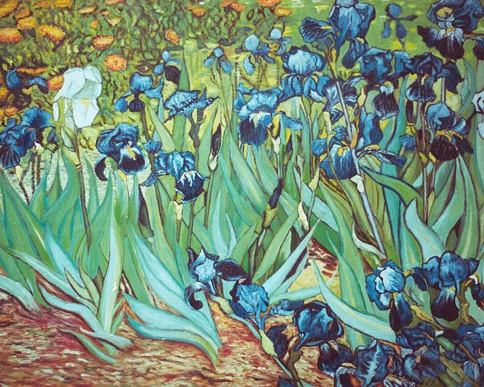 Irysy St Wyspianski Van Gogh Irises Van Gogh Paintings Vincent Van Gogh