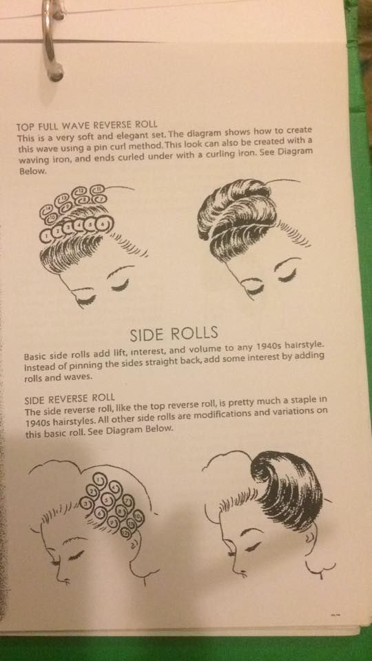 Hair Roll Diagram Illustration Of Wiring Diagram