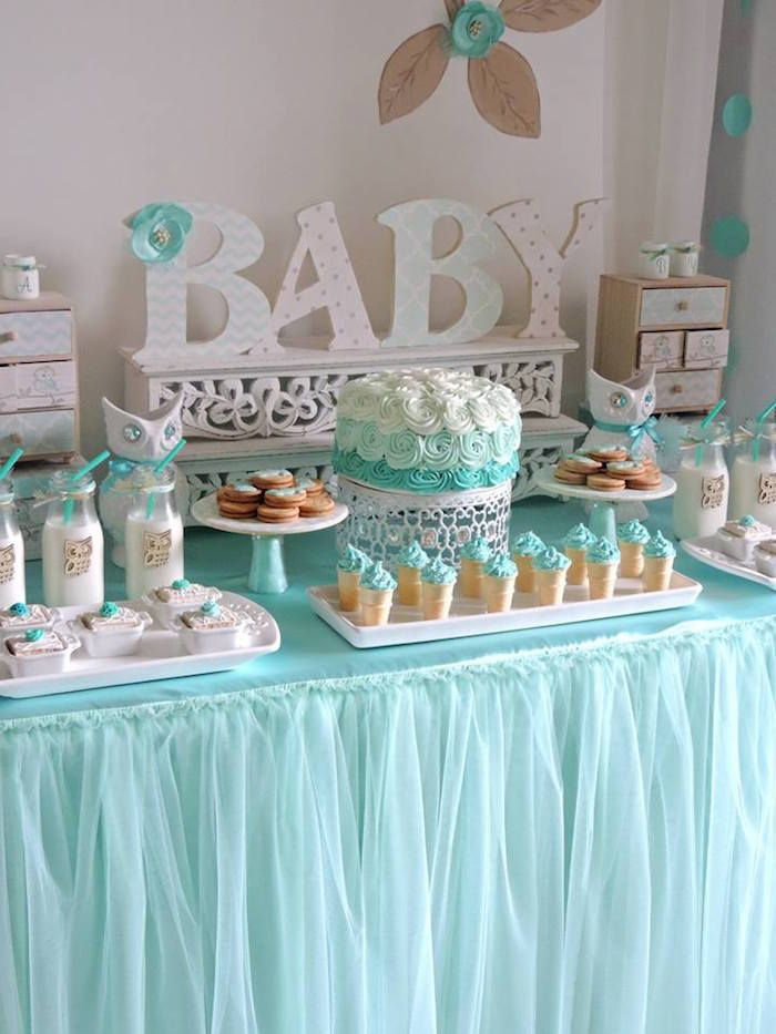 Turquoise Owl Welcome Home Baby Party Ashley S Baby Shower