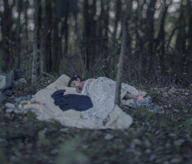 Er fotografiert ein schlafendes Kind im Wald - Die bittere Wahrheit sollten wir alle kennen. | LikeMag | We like to entertain you