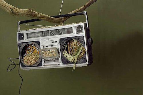 Aproveite qualquer material ou objeto que você já tenha. Um rádio antigo pode virar um comedouro estiloso, luzes de semáforo também. Faça alguns furos com broca de vidro (é necessário manter o vidro molhado para fazer os furos) e pendure com cabo de aço, corrente ou corda. Você também pode utilizar materiais da natureza, como casca de coco ou pedaço de tronco oco.