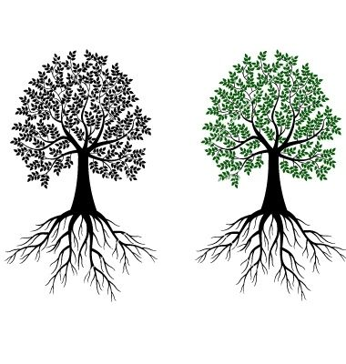 Tree And Roots Symbol | Tree silhouette vector 714704 - by dagadu ...