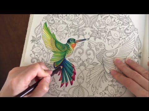 Coloring Tutorial The Hummingbird Part