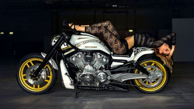 Harley Davidson V Rod Maori By E D Special Harley Davidson V Rod Harley Davidson V Rod