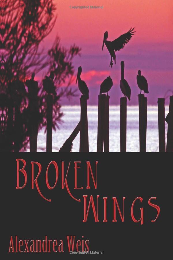 Amazon.com: Broken Wings (9781937593360): Alexandrea Weis: Books