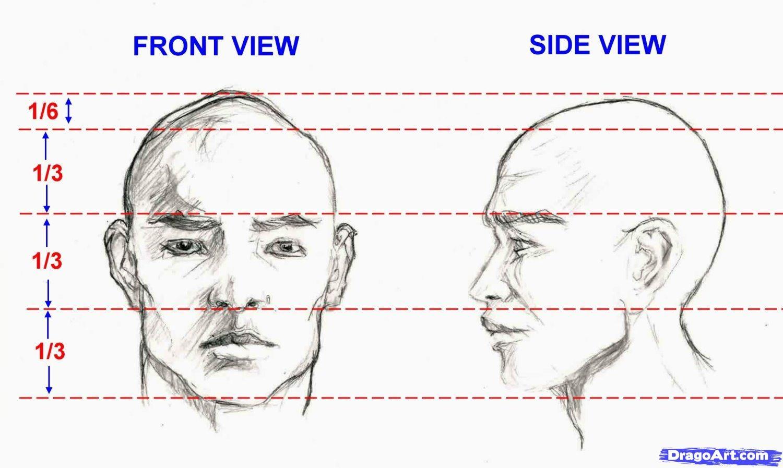 how to draw facial descriptions