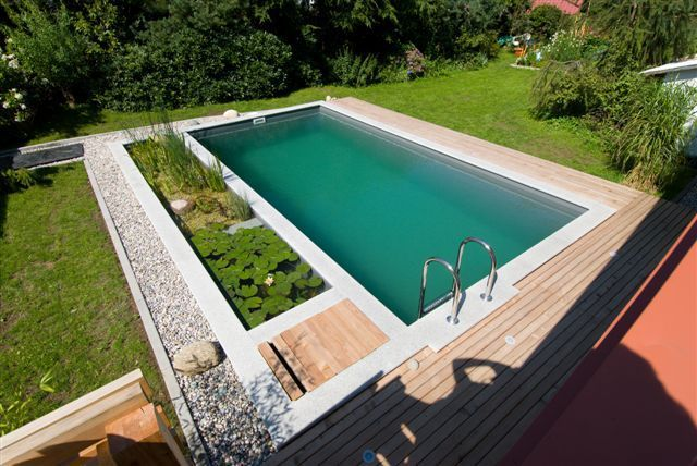 Organic Natural Swimming Pools Natural Pool Pinterest