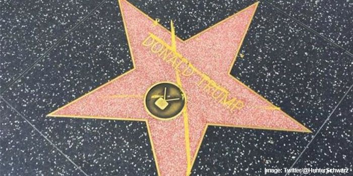Trumps Star Has Been The Target Of Spray Paint Feces Spit And
