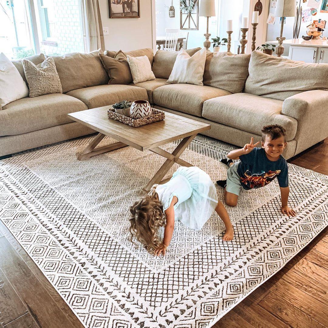 Burdette Area Rug In 2020 Farmhouse Rugs Living Room Li
