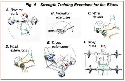 Strength Training Exercises For The Elbow And Wrist Softball Workouts Baseball Workouts Baseball Training