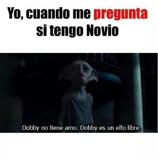 Novio P Harry Potter Memes Espanol Memes Harry Potter Memes