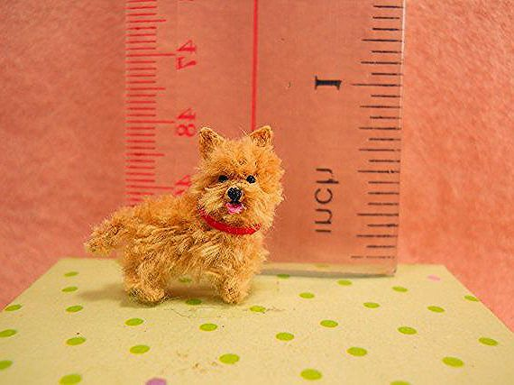 Fawn Cairn Terrier Puppy – Tiny Crochet Miniature Dog Stuffed Animals – Made To Order