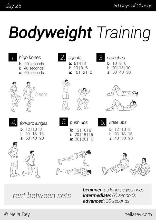 no equipment 30 day workout program imgur weight loss