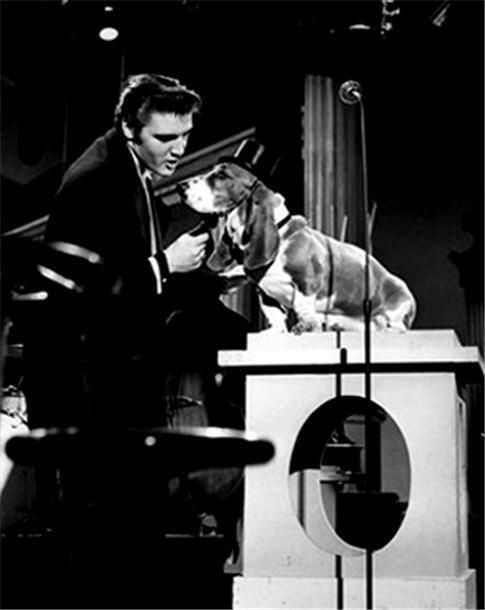 Elvis and friend