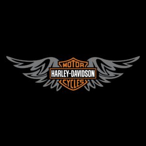 Harley Davidson Wings Logo Vector Decal Emblem Ai Eps Svg Png Free Vector Downloads Harley Davidson Harley Harley Davidson Art