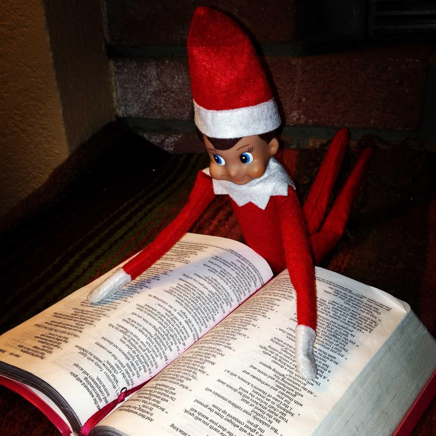 elf reading the christmas story elfie pinterest elves