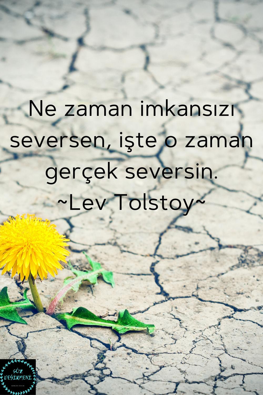 Unlu Sozleri Lev Tolstoy Sozleri Ask Sozleri Sevgi Sozleri Gercekler Ozlu Sozler Ilham Verici
