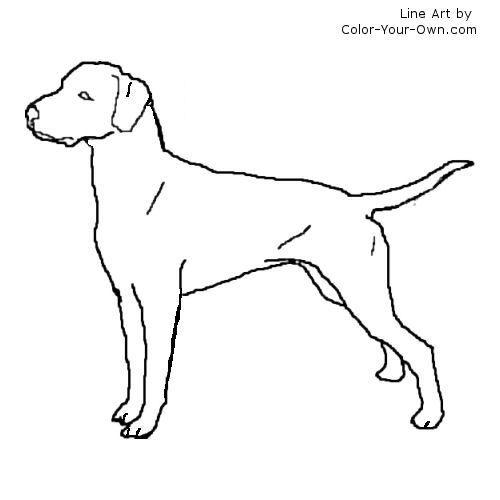 Dalmatian Dog Dog Coloring Page Dog Pattern Dalmatian Dogs