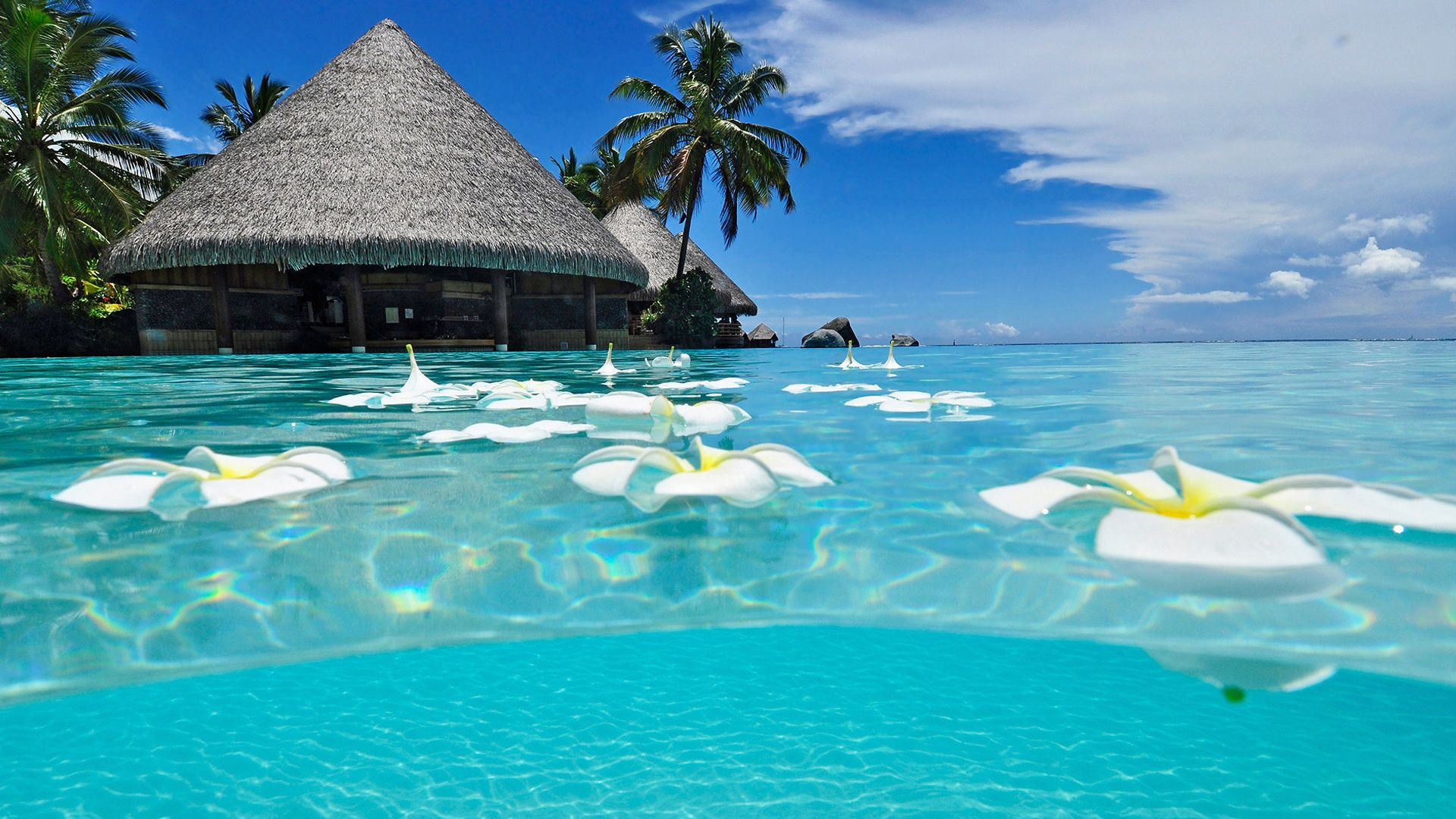Exceptional Beautiful Paradise Beach Summer Wallpaper    Http://69hdwallpapers.com/beautiful