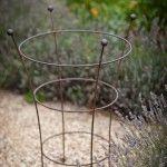 Gartenzauber Und Dein Garten Bluht Auf Pflanzenstutze Pflanzen Garten