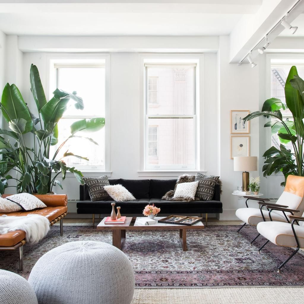 How to Feel Great About Renting Forever | Blank canvas, Renting and ...