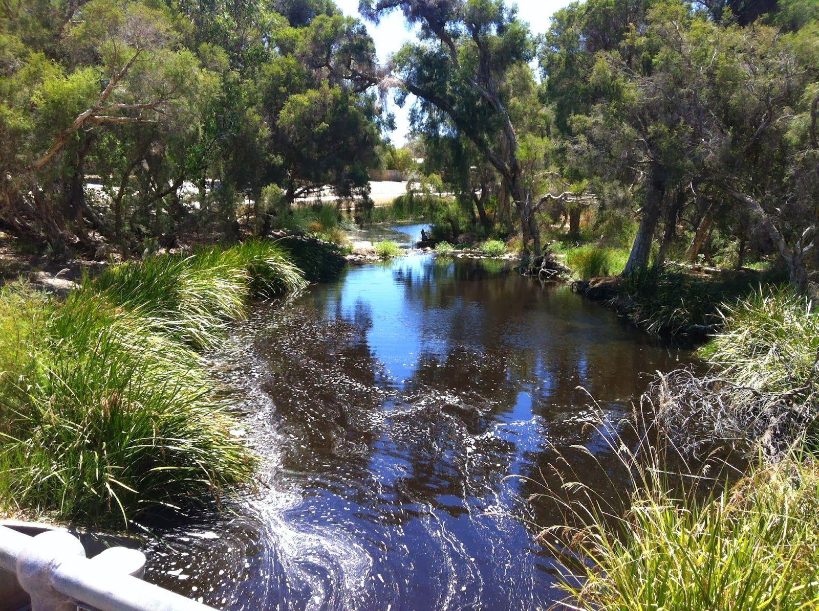Bannister Creek, Lynwood, Western Australia